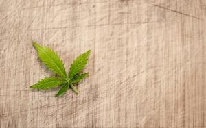 marijuana-3065621_1280
